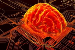 Cérebro - Chip